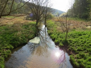 Eselsbach im Hagelgrund
