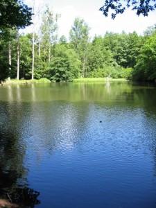 Schallbrunnerweiher